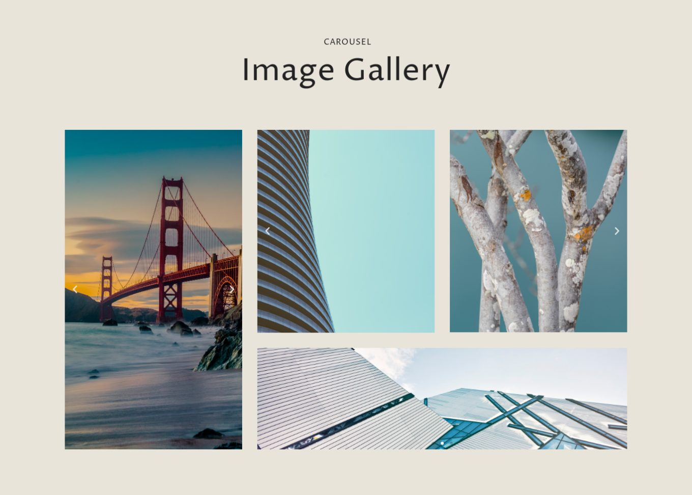Image Gallery 6