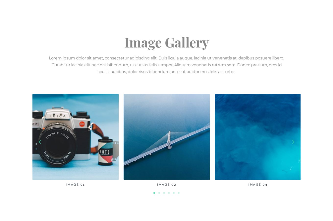 Image Gallery 8