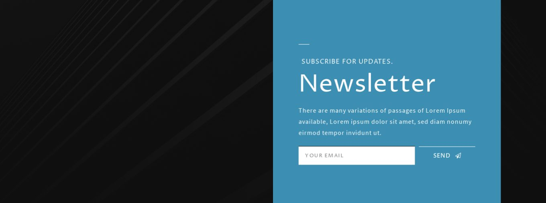 Newsletter Subscription 10