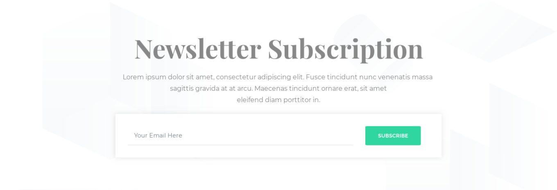 Newsletter Subscription 12
