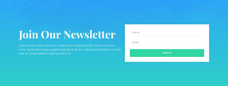 Newsletter Subscription 13