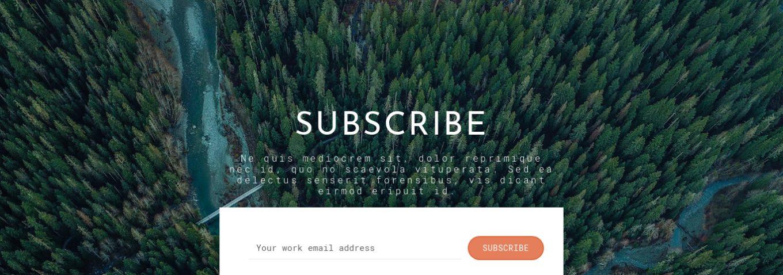 Newsletter Subscription 15