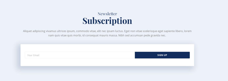 Newsletter Subscription 23