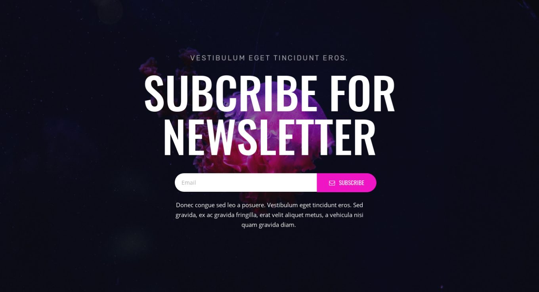 Newsletter Subscription 25