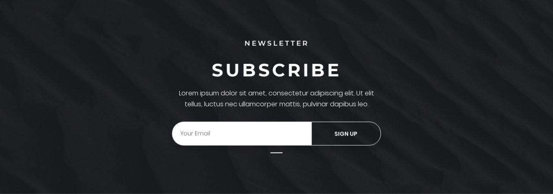 Newsletter Subscription 5